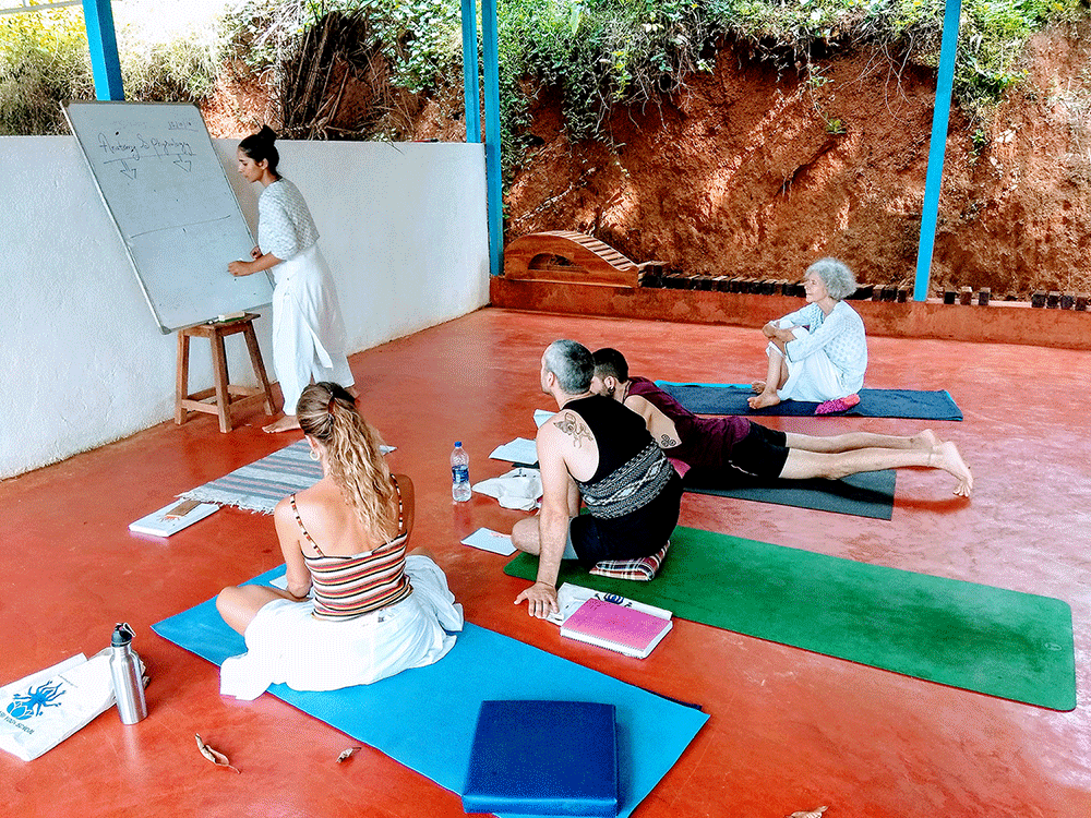Ayurveda teaching class in shree hari yoga school 300 hour yttc