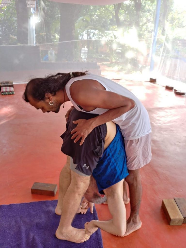 Uttanasana (Standing Forward Fold Pose)in shree hari yoga center