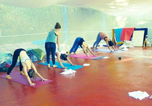 vinyasa and yin yoga teacher in shreehariyoga school, 500-hours yttc,Adho Mukha Svanasana (Downward-Facing Dog Pose)