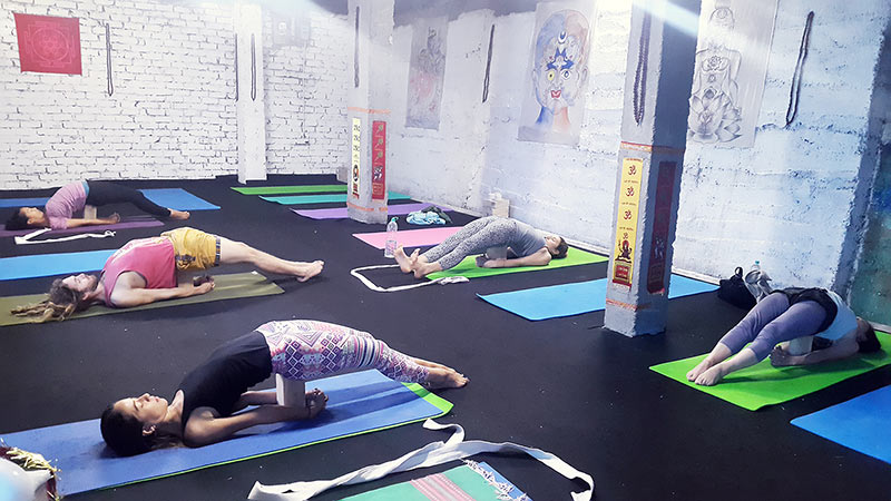 yoinyoga in dharamshala himalaya, shree hari yoga school in india