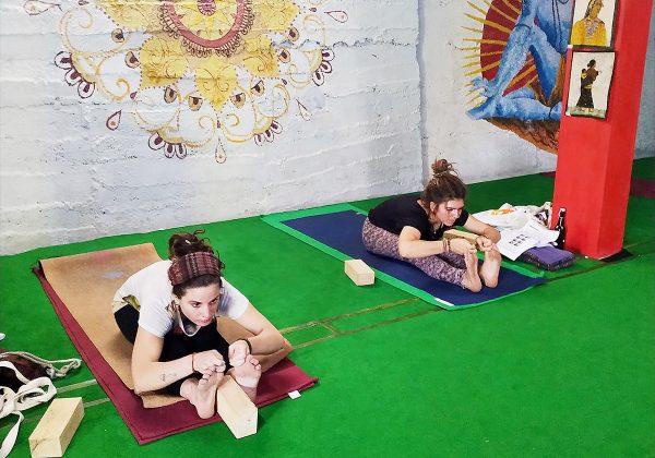 100 Hours Hatha Yoga Teacher Training Courses Accommodation and Food